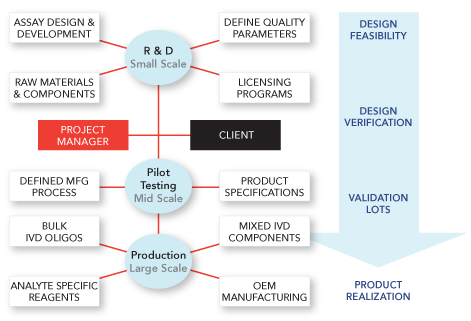 GMP Product Development