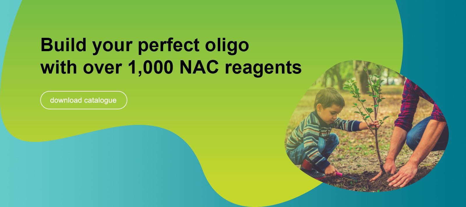 banner-nac-catalogue.jpg