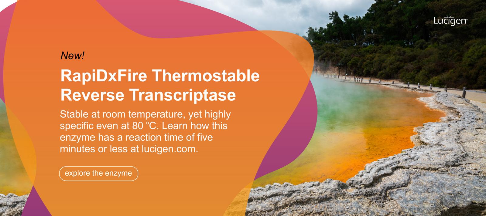 banner-rapidxfire-thermostable-reverse-transcriptase.jpg