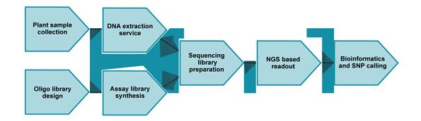 SeqSNP service project workflow
